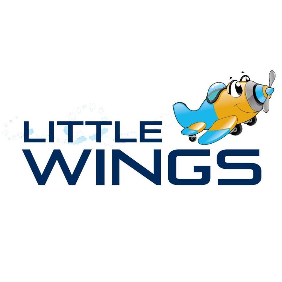 littlewings.jpg