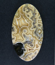 Top Shelf Crazy lace Agate Cabochon- Yellow+ White    #15090
