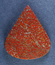 Dramatic Top Shelf Agatized Dino Bone Cabochon- Red and White  #15194