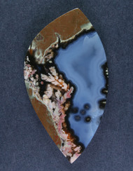 Exceptional Priday Plume Agate Collectors Cabochon  #15250