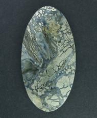 Exceptional!! Nipomo Marcasite in Agate Designer Cabochon  #15286