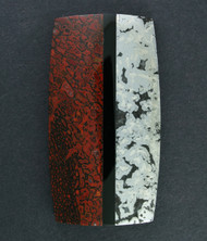 Gem Dino Bone/ Silver Ore/ Black Onyx Composite Cabochon   #15313