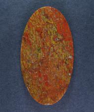 Multi-colored Dinosaur Bone Cabochon- Red, Yellow + Orange  #15448