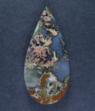 Exceptional Priday Plume Agate Collectors Cabochon  #15456
