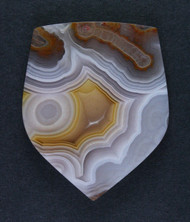 Pink and Yellow Agua Nueva Fotification Agate Cabochon #15517