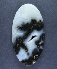 Rare!! Marfa Black Plume Agate Designer Cabochon  #15578