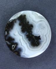 Rare!! Marfa Black Plume Agate Designer Cabochon  #15593