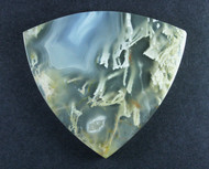 Exceptional Pony Butte Moss Agate Cabochon with Druzy   #15633