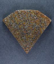 Dramatic Top Shelf Agatized Dino Bone Cabochon- Gold  and Green  #15645