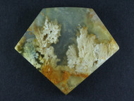 Exceptional Old School Graveyard Point Plume Agate Cabochon-   #15725