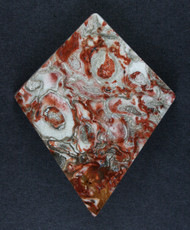 Gorgeous Red Petrified Palm Wood Designer Cabochon  #15788