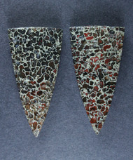 Top Shelf Red, Black and White Dino Bone- Matched Pair-   #15796