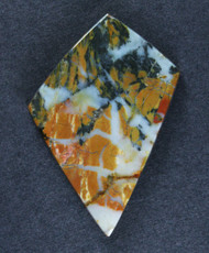 Dramatic Old Stock Stone Canyon Jasper Cabochon   #15836