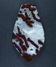 Gorgeous  Paul Bunyan Plume Agate Designer Cabochon  #15892