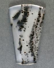 Montana Agate Designer Cabochon - Dramatic Dendrites!! 12779