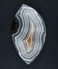 Top Shelf Laguna Agate Cabochon- White, Red and Yellow  #17168