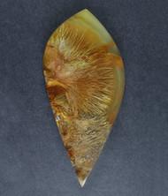 Gorgeous Designer Cabochon of Nipomo Sagenite Agate  #17283