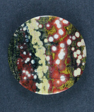Guadalupe Poppy Jasper Cabochon Red, Green and White   #17336