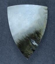 Gorgeous Cabochon of Saddle Rim Sagenite Agate   #17400