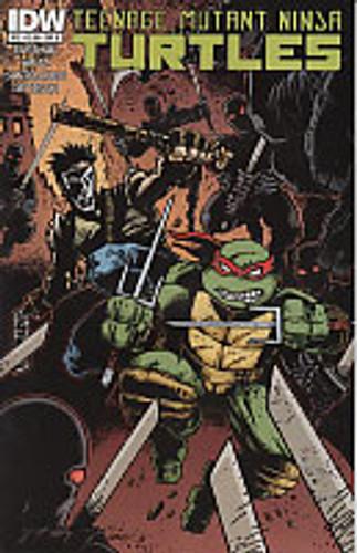 Teenage Mutant Ninja Turtles # 22