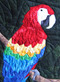 Parrot Picture Paper Piecing Quilt Close-up
