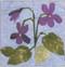 Violets Flower Block