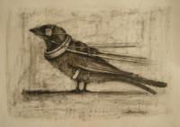 Camilo Villalvilla Soto  #6339 (SL). Untitled, N.D. Charcoal on white paper. 19.5 x 17.5 inches.