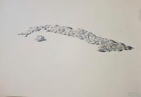 "Franklin Alvarez #5619. ""Some aspirins,"" 2012. Watercolor on paper."