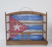 "Adrian Rumbaut, ""Simbolo oculto,"" 2015. Mixed media: canvas, bird cage. 15"" x 12"" x 6"""