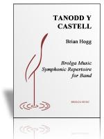 Tanodd Y Castell