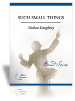 Such Small Things (Band Gr. 2)