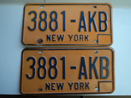 PAIR NEW YORK License Plates 3881 AKB