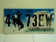 WYOMING Bucking Bronco Devils Tower Truck License Plate 4 73EW