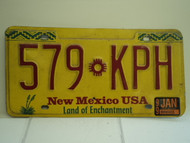 1999 NEW MEXICO Land of Enchantment License Plate 579 KPH