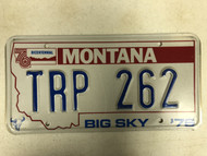1976 MONTANA Big Sky '76 Bicentennial License Plate TRP-262 Cow Skull
