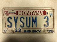 1976 (1991 Tag) MONTANA Big Sky '76 Bicentennial License Plate SYSUM-3 Cow Skull