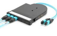 P3Link Xtreme 40G MTP Transition Cassette