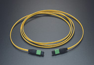 P3Link Xtreme Singlemode 12 fiber trunk/backbone cable. Top quality MTP terminations on both ends (test reports included) Length is 3 meters. 12 fiber singlemode OFNP (Plenum) cable Yellow Jacket Use with Xtreme cassettes and patch panels as part of P3Link Xtreme Perfect for Data Center, LAN, SAN environments Made in the USA