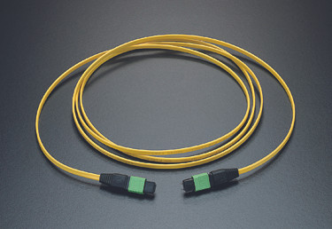 P3Link Xtreme Singlemode 24 fiber trunk/backbone cable. Top quality 12 fiber MTP terminations on both ends (test reports included). 12 fiber singlemode OFNP (Plenum) cable - Yellow Jacket - Use with Xtreme cassettes and patch panels as part of P3Link Xtreme Perfect for Data Center, LAN, SAN environments Made in the USA  Available in the following lengths: 3, 8, 15, 23, 31, 38, 46, 61, 76