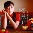 Wang Erni 王二妮 : 爱陕北(CD) (WVEC)