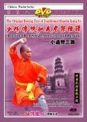 Routine III of Small Arms-through Boxing - The Original Boxing Tree of Traditional Shaolin Kung Fu - (WM09)