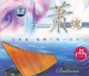 Panflute: Panflute Soul (3 CDs) - (WWNH)