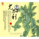 Eucalyptus - The Fragrant Pharmacy Spirit Music - (WY39)