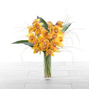 Orchid Duet