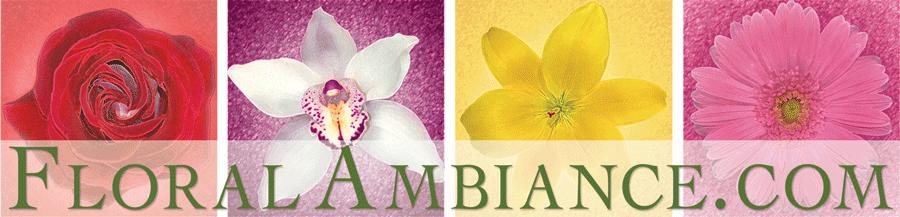 floralambiance.com