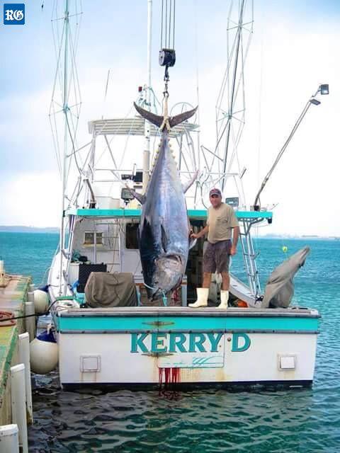Blog for Fishing in bermuda