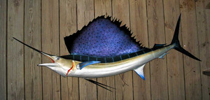 Sailfish 79 inch Left Full mount fiberglass fish replica