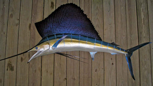 Sailfish 92L inch half mount fiberglass fish replica