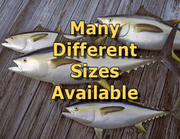 Many Sizes Available - Tuna