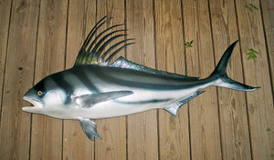 Roosterfish 55 inches Full Mount Fiberglass Fish Replica